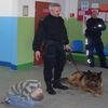 Spotkanie z przewodnikiem psa w Zaborowie