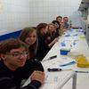 Uczniowie LO na Festiwalu Nauki w Warszawie