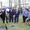 Dęby ofiarom NKWD, prezydentowi pomnik...