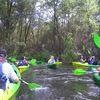 Kajakarze oczyścili rzekę Wel
