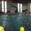 Transgraniczny Mikołajkowy Turniej Pływacki