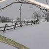 To na wsi zima jest napiękniejsza- Łęg, gm. Wieczfnia Kościelna, zima 2011