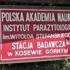 Kosewo