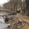 Wycięli drzewa na nabrzeżu Jeziora Drwęckiego