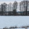 Wiosna w Janowie