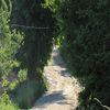 Miechy: mazurskie krajobrazy