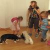 Spotkanie dzieci z treserem psów