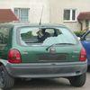 Wybił szyby w samochodach i trafił do policyjnego aresztu