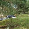 Ktoś wyrzucil śmieci niedaleko lasu