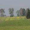 Droga Biskupiec - Barczewo