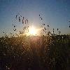 Zachody słońca i inne.