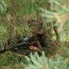 Zostań żołnierzem 17. wielkopolskiej Brygady Zmechanizowanej