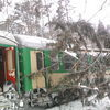 Drzewo spadło na pociąg