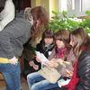 Frombork, gra miejska