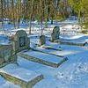 Cmentarz ewangelicki w Krutyni