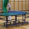 Tenis stołowy: Liga w Rybnie