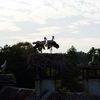 Żywkowo: bociania stolica Polski