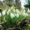 Pierwszy dzień wiosny w okolicach Bisztynka