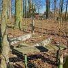 Osiniak - Piotrowo: cmentarz staroobrzędowców