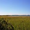 Widok z wiezy widokowej na jeziorze Łuknajno