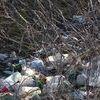 Wysypują śmieci gdzie się da