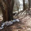 Śmieci nad Długim