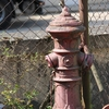 Zabytkowe bartoszyckie hydranty