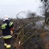 Strażacy usuwali skutki wichury.