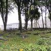 Ostróda: cmentarz katolicki z XIX wieku