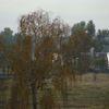 Mazury widziane z okna pociągu