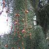 Natura cz. 4