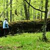 Rezerwat Koniuszanka