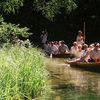 Krutynia: królowa mazurskich rzek