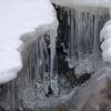 Zimowy Reszel