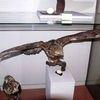 Muzeum Ziemi Piskiej