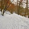 Zimowa Krutynia