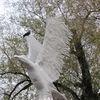 Mrągowo: rzeźby nad jeziorkiem Magistrackim